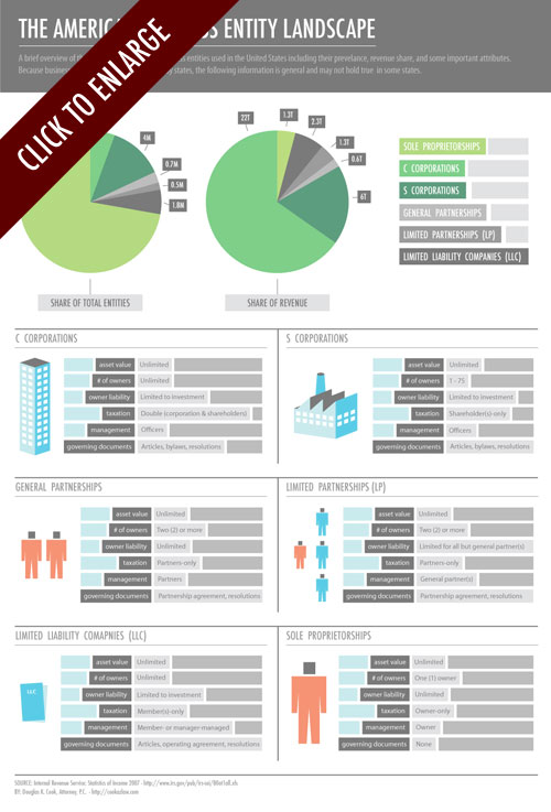 American Business Entity Infographic